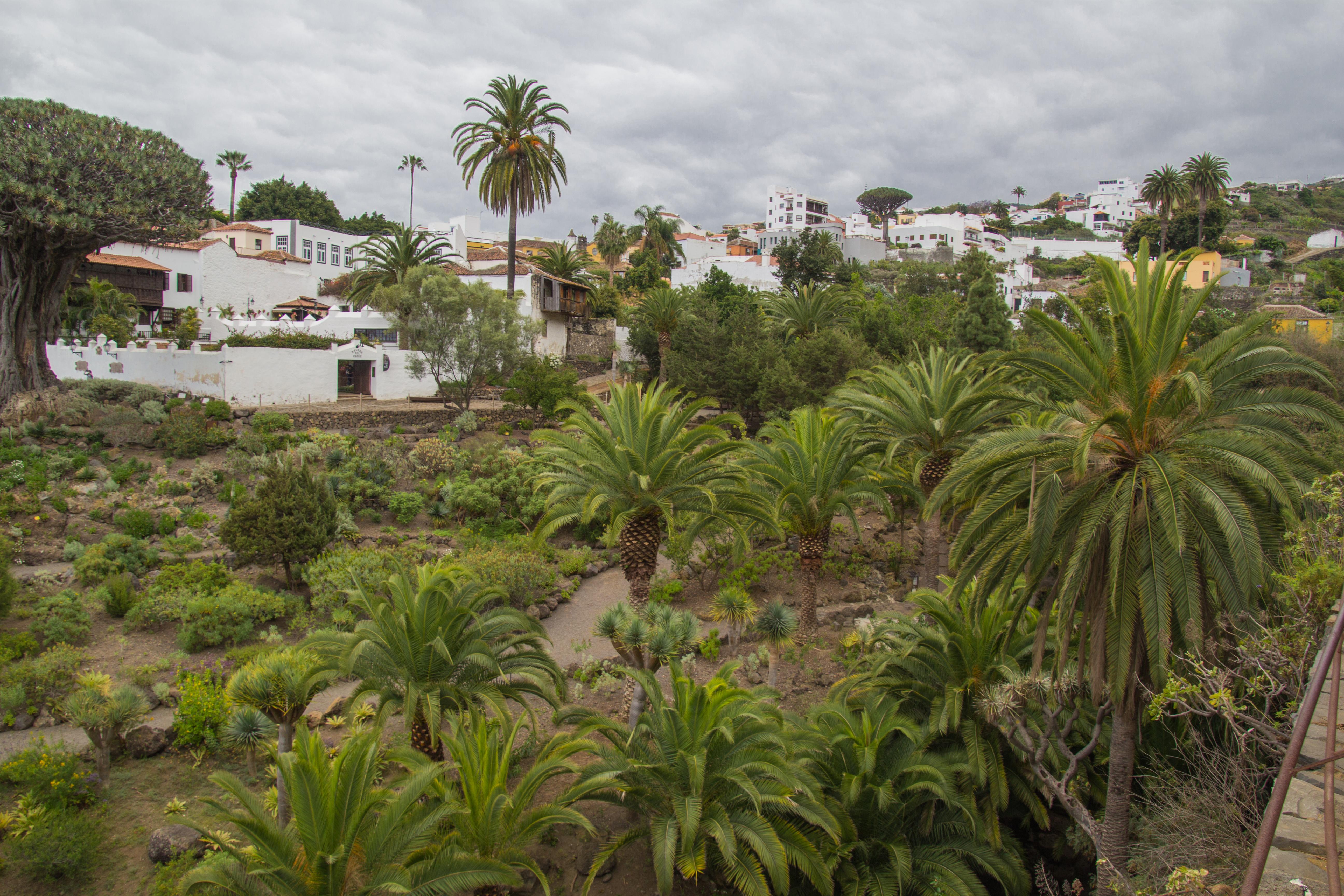 SpainMorocco-116.jpg
